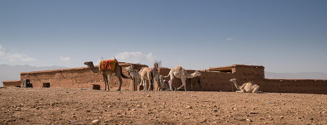 morocco-berber-village-1125x430